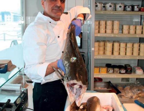 Norsk fisk fra Kina TUR/RETUR!