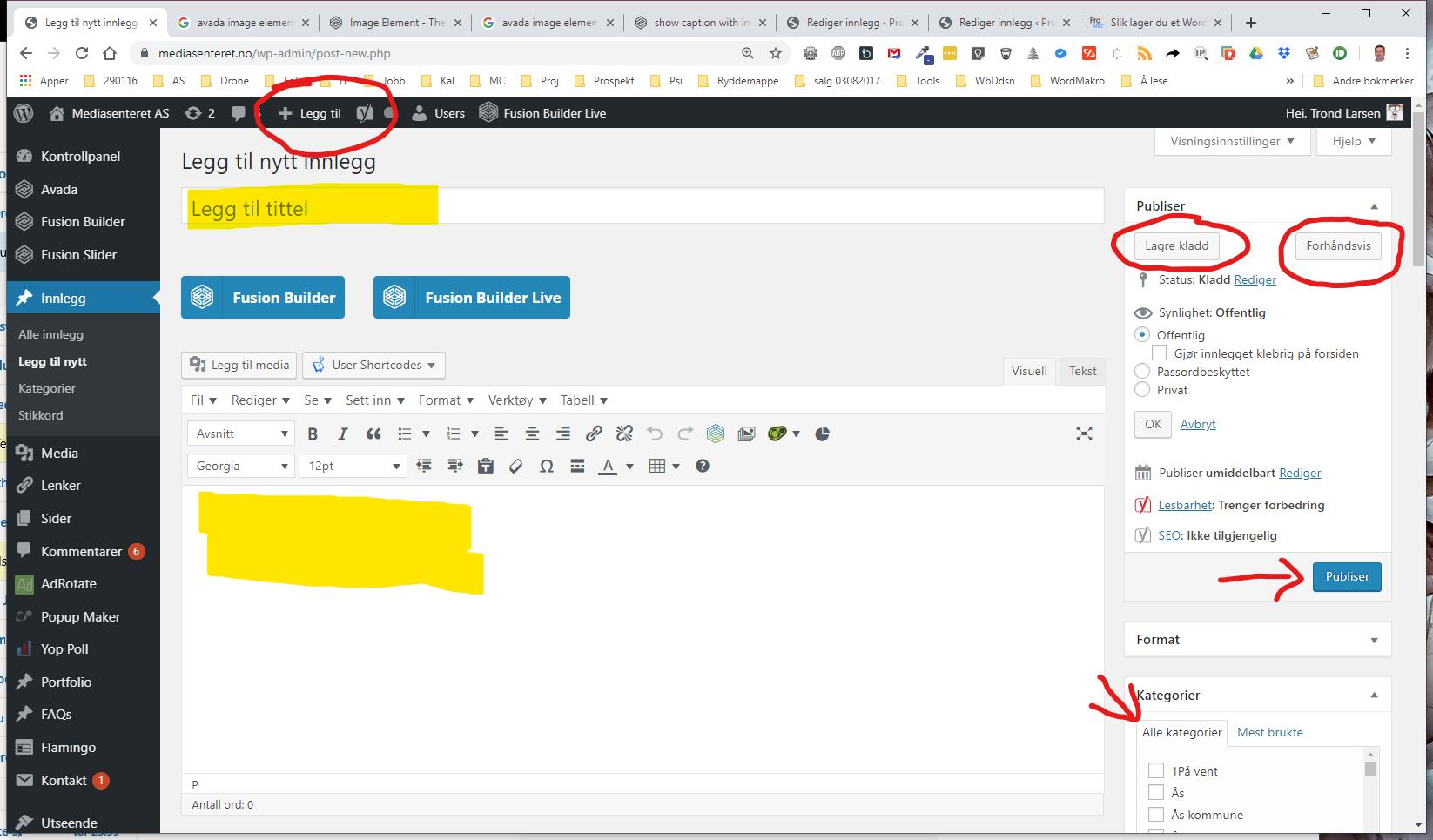 Innlegg-Wordpress