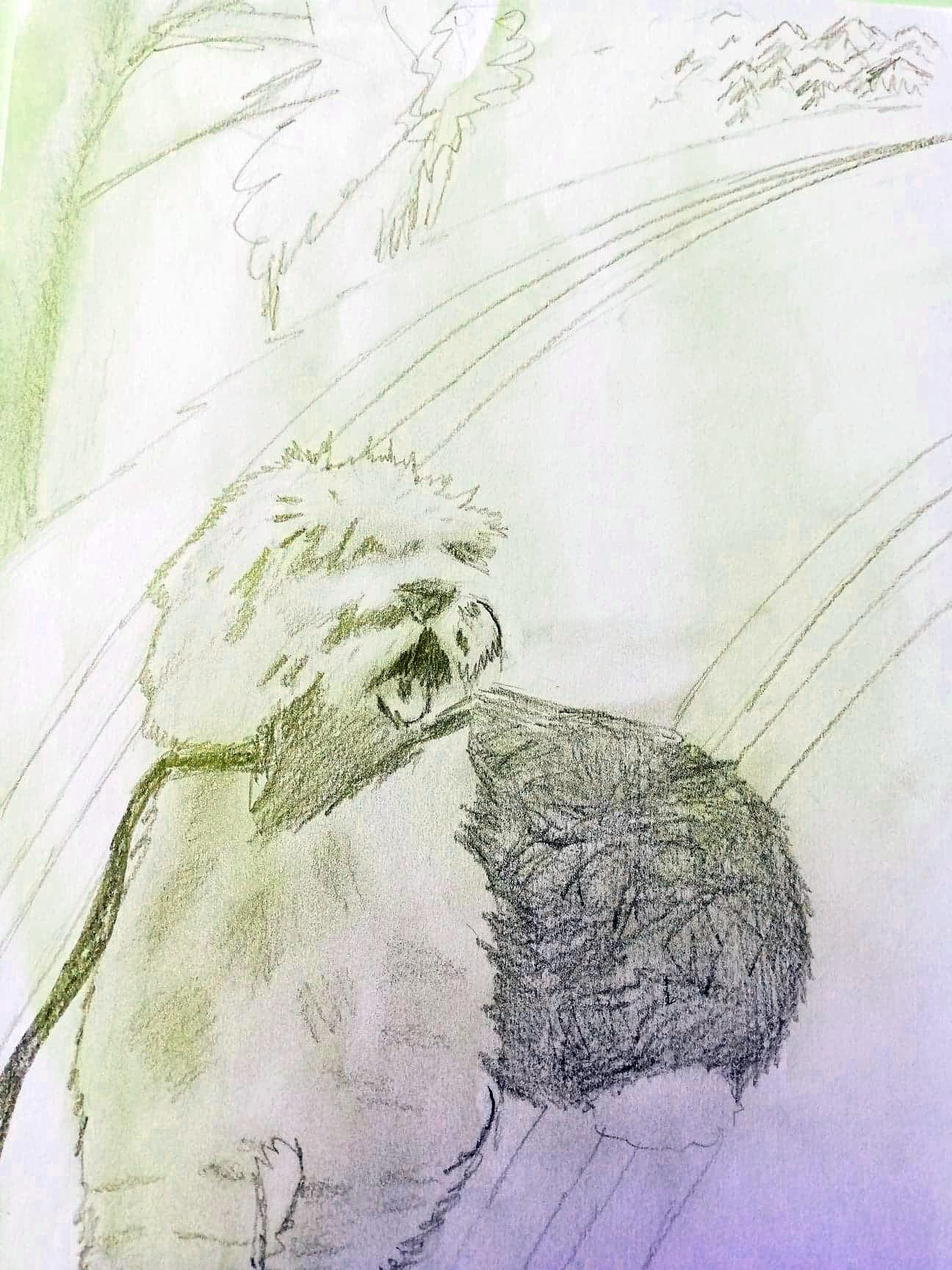 Fin tegning av hunden Bosse