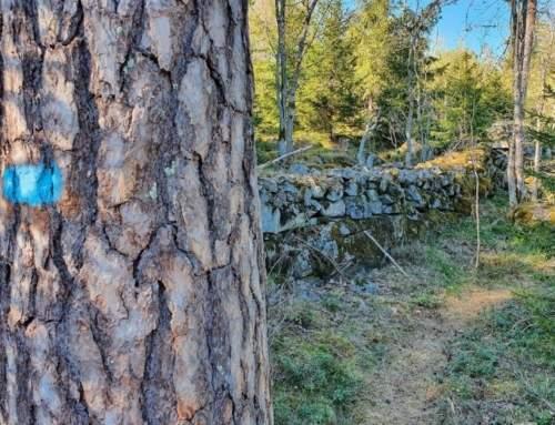 Turforslag fra Vestby Turlag – Denne gang tur nr. 56 : Son-Hølen-Karderåsen-Kolås