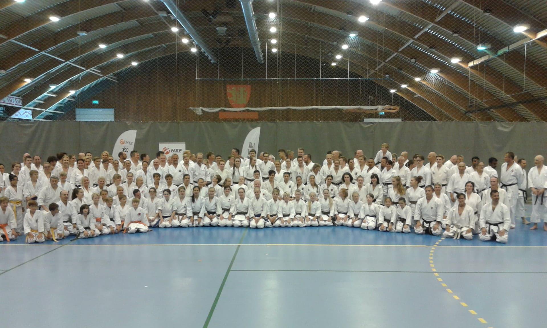 Vestby karate- samlet