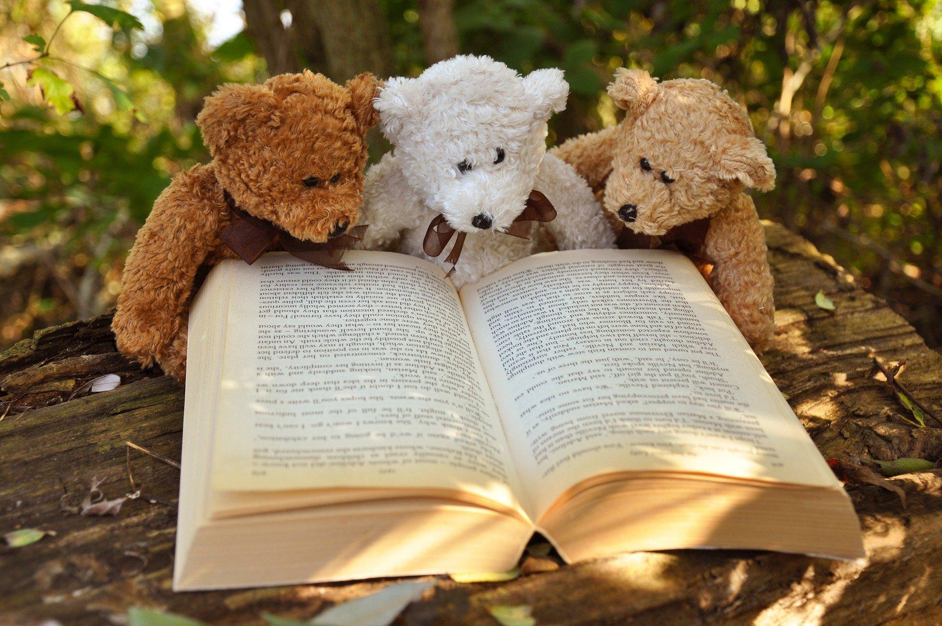 3 kosebamser leser bok