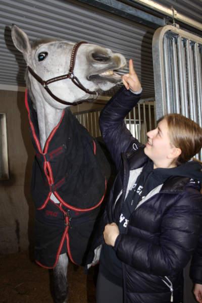 hest og jente smiler til hverandre